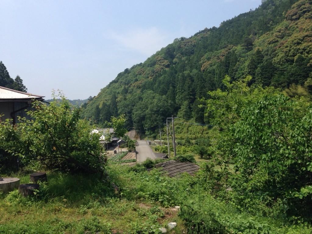 神山_170213_0017