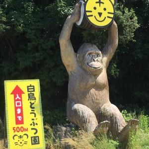 【香川】しろとり動物園!
