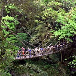 日本三奇橋のひとつ『祖谷のかずら橋』
